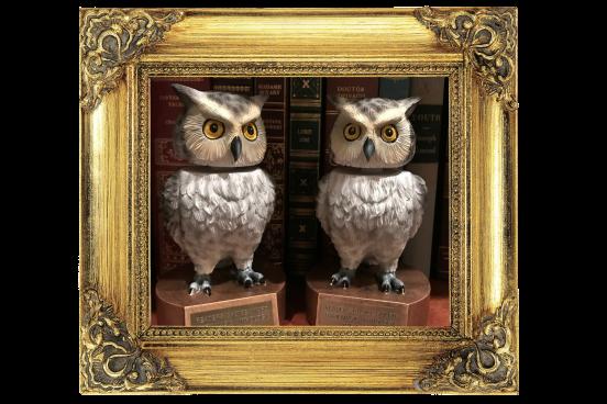 owltrophy1
